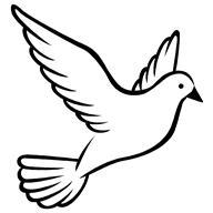 Logo Burung Merpati Vektor Brad Erva Doce Info